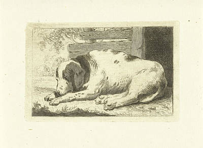 Sleeping Dog, Johannes Van Cuylenburgh Art Print by Artokoloro