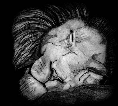 Sleeping Lion Art Print by Saki Art