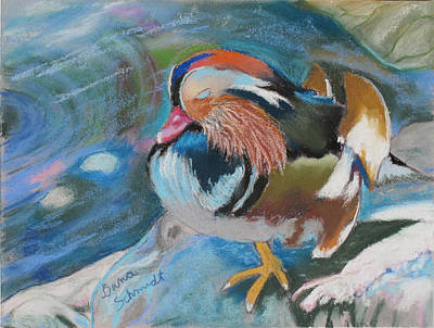 Sleeping Mandarin Duck Art Print