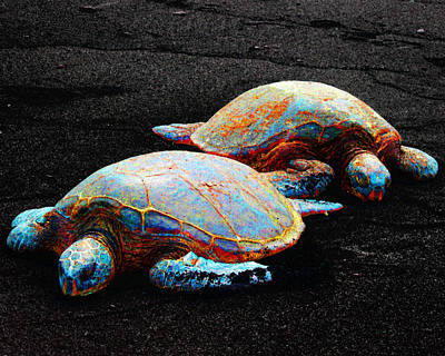 Photograph - Sleeping Sea Turtles by Timothy Bulone