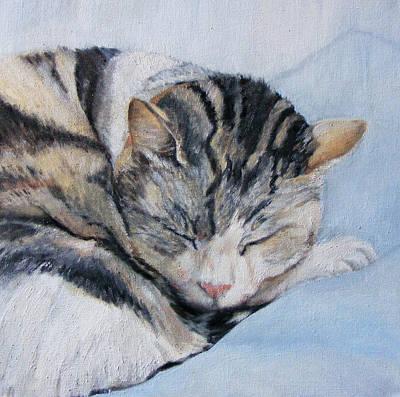 Catnap Painting - Sleeping Sullivan by Fiona Quinn