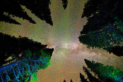 Milky Way Photograph - Sleeping Under The  Milky Way Stars by James BO  Insogna