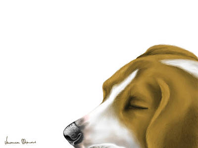Beagle Painting - Sleeping by Veronica Minozzi