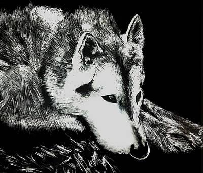 Sleeping Wolf Art Print by Shabnam Nassir