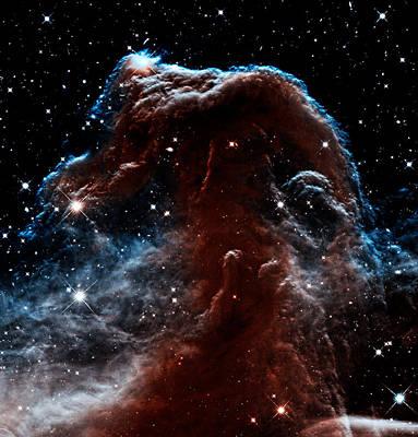 Photograph - Sleepy Hollow - Horsehead Nebula by Weston Westmoreland