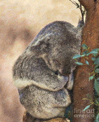 Marsupial Digital Art - Sleepy Koala by Liz Leyden