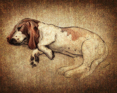 Sleeping Dog Digital Art - Sleepy Penny by Kyle Wood