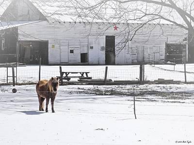 Sleet Aplenty On The Farm Art Print by Matt Taylor