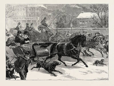 Harlem Drawing - Sleighing At Harlem, New York, United States Of America by American School