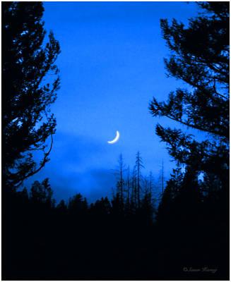 Montana Photograph - Slice Of Moon by Susan Kinney