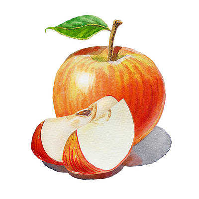 Sliced Red Apple  Art Print by Irina Sztukowski