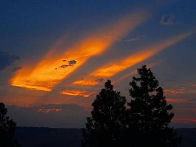 Photograph - Slices Of Last Light by Jacqueline  DiAnne Wasson