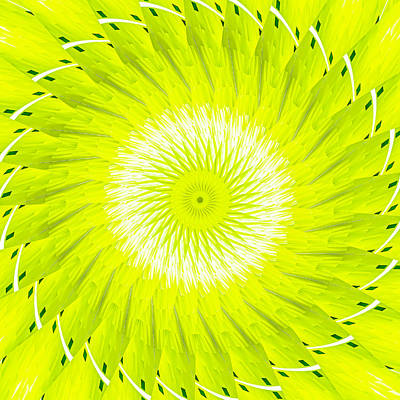 Digital Art - Slices Of Lemon by Carolyn Marshall