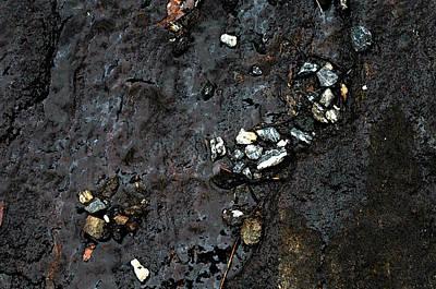 Art Print featuring the photograph Slippery Rock  by Allen Carroll