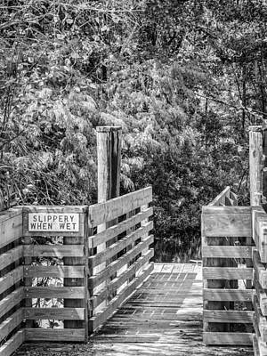 Photograph - Slippery When Wet Bw by Carolyn Marshall