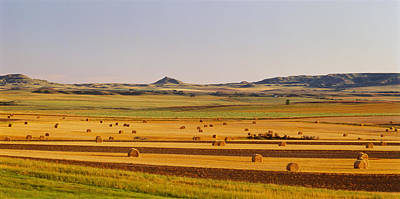 Bale Photograph - Slope Country Nd Usa by Panoramic Images