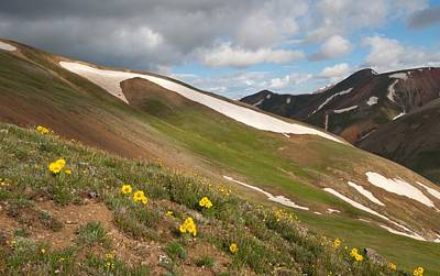Photograph - Slopes Of Redcloud Peak by Cascade Colors