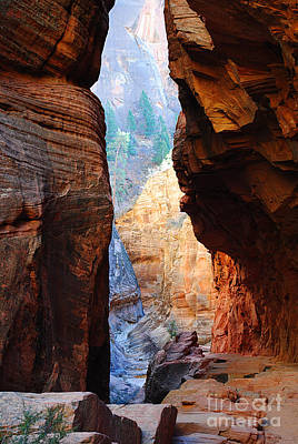 Photograph - Slot Canyon Pass Observation Point Zion by Kate Sumners