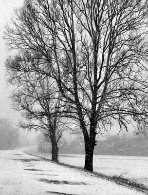 Indiana Winters Photograph - Slow Going I by Julie Dant
