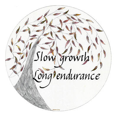 Drawing - Slow Growth. Long Endurance. by Dianne Levy
