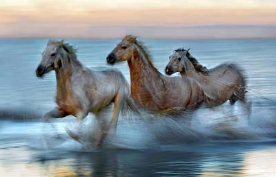 Beach Action Wall Art - Photograph - Slow Motion Horses by Xavier Ortega