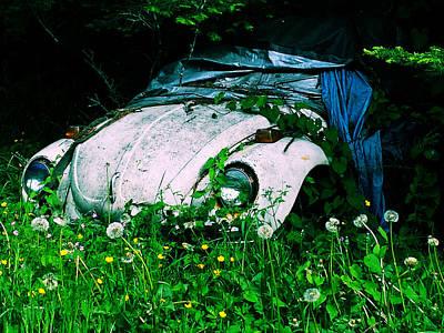 Photograph - Slugbug by Michael Merry