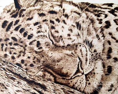 Slumber Art Print by Paper Horses Jacquelynn Adamek