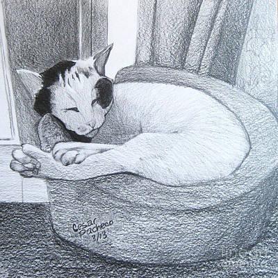 Slumbering Serena Art Print