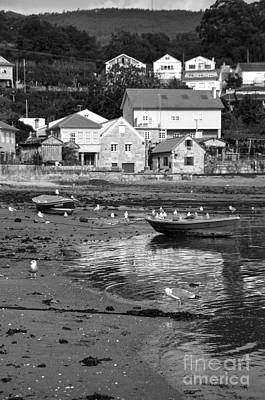 Photograph - Small Boats And Seagulls In Galicia Bw by RicardMN Photography
