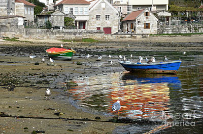 Small Boats And Seagulls In Galicia Original