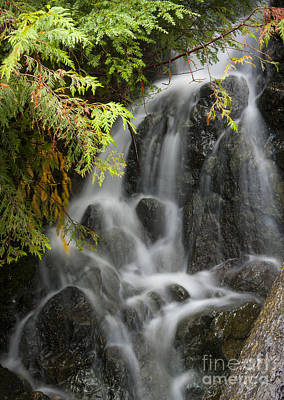 Photograph - Small Cascade by Idaho Scenic Images Linda Lantzy