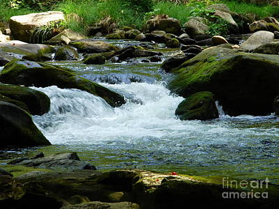 Photograph - Small Cascade by Lew Davis