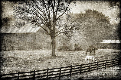 Small Farm In West Virginia Art Print by Dan Friend