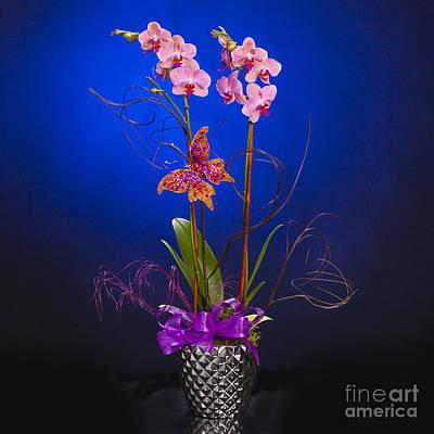 Photograph - Small Flower Arrangement 8002.02 by M K Miller