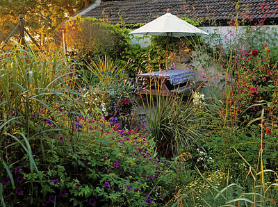Garden Flowers Photograph - Small Patio With Dense Planting by Panoramic Images