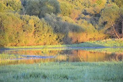 Photograph - Small Pond by Bonfire Photography