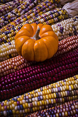 Indian Corn Wall Art - Photograph - Small Pumpkin And Indian Corn by Garry Gay