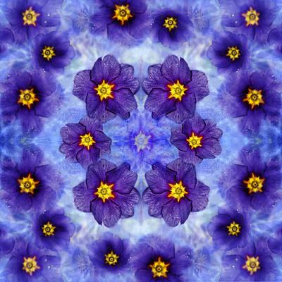 Photograph - Small Purple Flowers - Dark by Belinda Greb