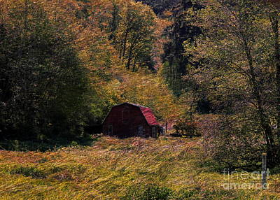 Photograph - Small Red Barn by Erica Hanel