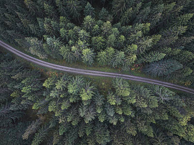 Aerial Wall Art - Photograph - Small Road Through The Forest by Christian Lindsten