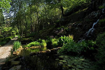 Garden Photograph - Small Water Garden Below The Waterfall by Panoramic Images