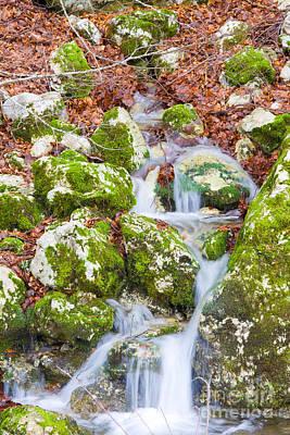 Spring Scenery Photograph - Small Waterfall by Gabriela Insuratelu