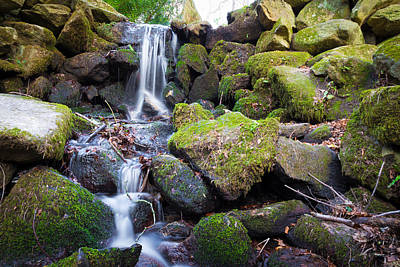 Photograph - Small Waterfall In Marlay Park Dublin by Semmick Photo
