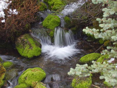 Photograph - Small Waterfalls by Yvette Pichette
