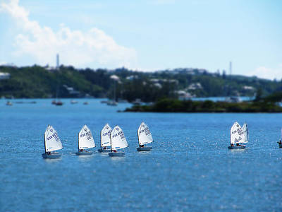Photograph - Small World - Flotilla by Richard Reeve
