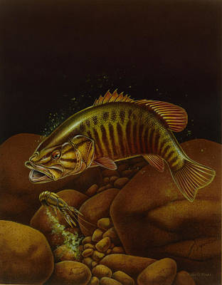 Angling Painting - Smallmouth And Crawdad by Jon Q Wright