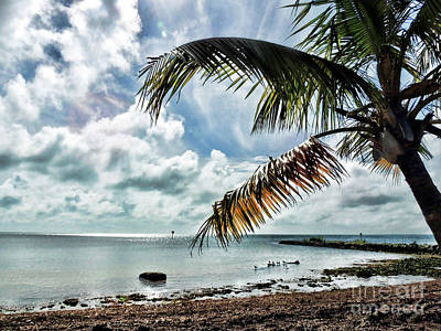 Photograph - Smathers Beach by Joan  Minchak