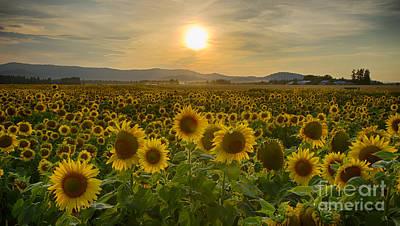 Photograph - Smile by Idaho Scenic Images Linda Lantzy