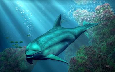 Aquatic Life Digital Art - Smiling Dolphin by Daniel Eskridge