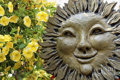 Photograph - Smiling Sunflower Face by John  Mitchell